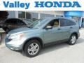 2010 Opal Sage Metallic Honda CR-V EX AWD  photo #1