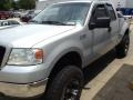 Silver Metallic 2005 Ford F150 Gallery