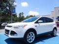 2014 White Platinum Ford Escape Titanium 1.6L EcoBoost  photo #1