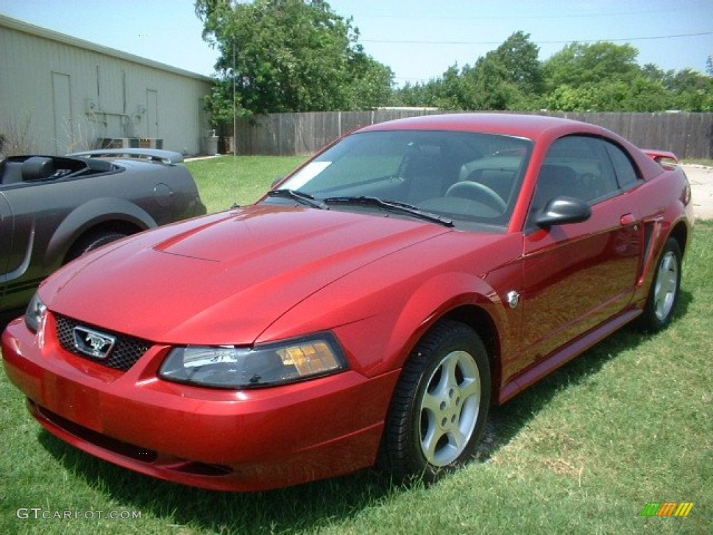 2004 ford mustang v6 coupe exterior photos. Black Bedroom Furniture Sets. Home Design Ideas