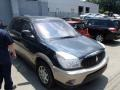 Dark Steel Blue Metallic 2004 Buick Rendezvous CXL AWD