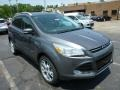 2014 Sterling Gray Ford Escape Titanium 2.0L EcoBoost 4WD  photo #1