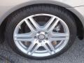 Palladium Silver Metallic - E 550 Coupe Photo No. 5