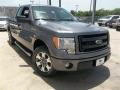 Sterling Gray Metallic - F150 STX SuperCab Photo No. 6