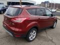 2014 Sunset Ford Escape SE 1.6L EcoBoost 4WD  photo #8