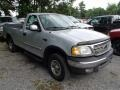 Silver Metallic 2003 Ford F150 XLT Regular Cab 4x4