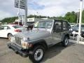 Silverstone Metallic 2001 Jeep Wrangler Gallery
