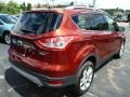 2014 Sunset Ford Escape Titanium 1.6L EcoBoost 4WD  photo #2