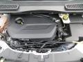 2014 White Platinum Ford Escape SE 1.6L EcoBoost  photo #14