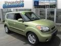 Alien Green 2010 Kia Soul +