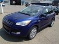 Deep Impact Blue 2014 Ford Escape Gallery