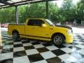 Yellow 2005 Ford F150 Gallery
