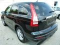 2010 Crystal Black Pearl Honda CR-V EX  photo #5