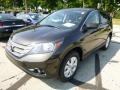 2013 Kona Coffee Metallic Honda CR-V EX AWD  photo #7