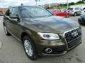 Maya Brown Metallic 2014 Audi Q5 Gallery