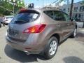2010 Tinted Bronze Metallic Nissan Murano SL AWD  photo #7
