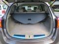 2010 Tinted Bronze Metallic Nissan Murano SL AWD  photo #25