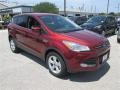 2014 Sunset Ford Escape SE 1.6L EcoBoost  photo #6