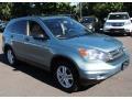 2010 Opal Sage Metallic Honda CR-V EX AWD  photo #3