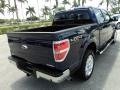 Dark Blue Pearl Metallic - F150 Lariat SuperCrew 4x4 Photo No. 6