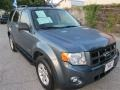 Steel Blue Metallic 2010 Ford Escape Hybrid