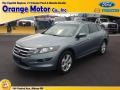 2010 Opal Sage Metallic Honda Accord Crosstour EX-L 4WD #84739320