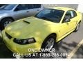 2003 Zinc Yellow Ford Mustang V6 Coupe #84859997