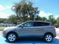 2014 Sterling Gray Ford Escape SE 2.0L EcoBoost  photo #2