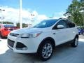 2014 White Platinum Ford Escape SE 2.0L EcoBoost  photo #1