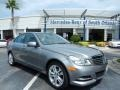 Palladium Silver Metallic 2014 Mercedes-Benz C 250 Luxury