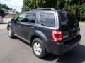 2009 Black Pearl Slate Metallic Ford Escape XLT  photo #6