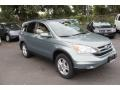 2010 Opal Sage Metallic Honda CR-V EX-L AWD  photo #3