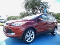 2014 Sunset Ford Escape Titanium 2.0L EcoBoost  photo #1