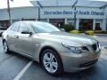 Platinum Bronze Metallic 2010 BMW 5 Series 528i xDrive Sedan