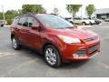 2014 Sunset Ford Escape SE 1.6L EcoBoost  photo #3