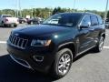 Black Forest Green Pearl 2014 Jeep Grand Cherokee Gallery