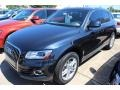 Moonlight Blue Metallic 2014 Audi Q5 Gallery