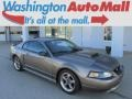 2001 Mineral Grey Metallic Ford Mustang GT Coupe #86206793