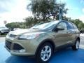 Ginger Ale 2014 Ford Escape Gallery