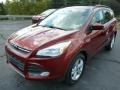2014 Sunset Ford Escape SE 1.6L EcoBoost 4WD  photo #5