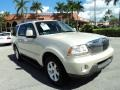 Ivory Parchment Tri-Coat 2005 Lincoln Aviator Gallery