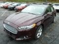 2013 Bordeaux Reserve Red Metallic Ford Fusion SE 2.0 EcoBoost  photo #5