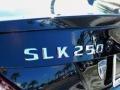 2014 Black Mercedes-Benz SLK 250 Roadster  photo #4