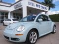 2010 Aquarius Blue Volkswagen New Beetle Final Edition Coupe #86892063