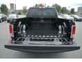 Canyon Brown/Light Frost Beige Trunk Photo for 2014 Ram 1500 #86922141