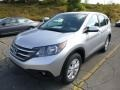 2014 Alabaster Silver Metallic Honda CR-V EX AWD  photo #7