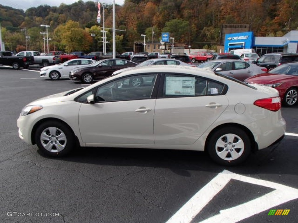 2014 Forte LX   Desert Sand / Gray Photo #5