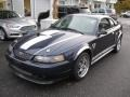 2003 True Blue Metallic Ford Mustang GT Coupe  photo #3