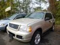 2005 Pueblo Gold Metallic Ford Explorer XLT 4x4 #87182589