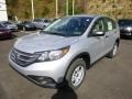 Alabaster Silver Metallic 2014 Honda CR-V Gallery